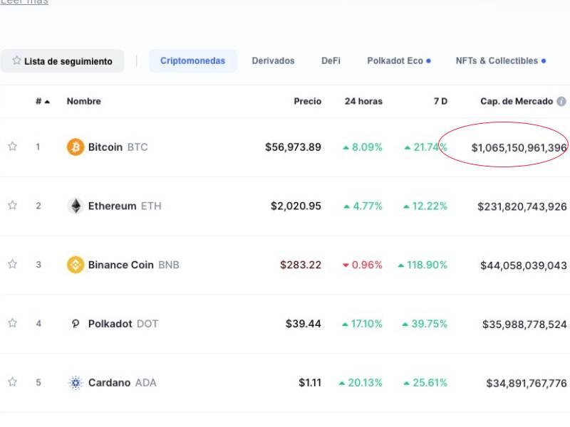 mercado capital bitcoin