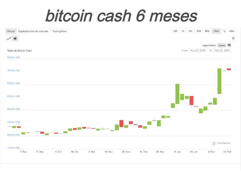 precio bitcoin cash 6 meses