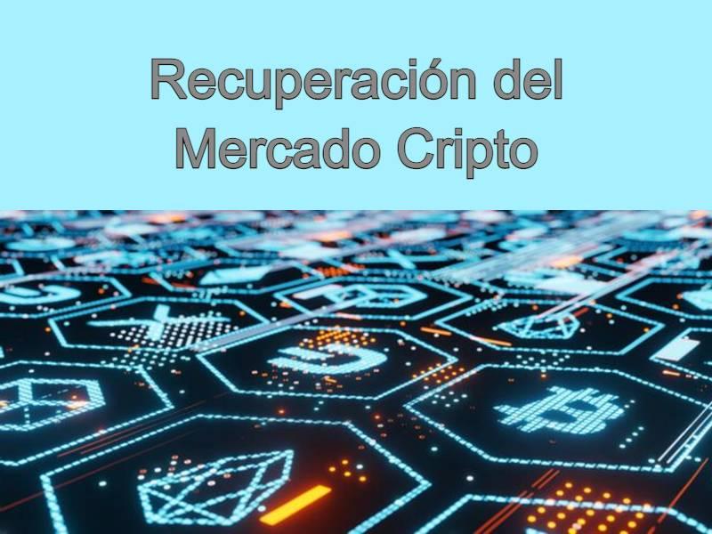 el mercado de bitcoin se recupera